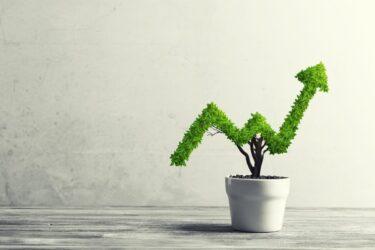 【2021】FP投資家が厳選!おすすめ投資法6選&おすすめポイント
